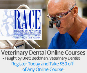 Veterinary Dental Online Course
