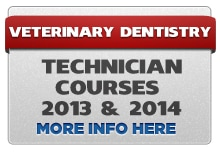 TECH2013 14 Veterinary Dental CE Classes and Vet Dentistry Lab Courses