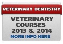 VET2013 14 Veterinary Dental CE Classes and Vet Dentistry Lab Courses