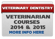 Veterinary Dentistry & Radiology for the Veterinarian and Technician