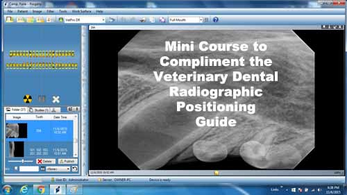 Veterinary Dental Radiography Positioning Guide