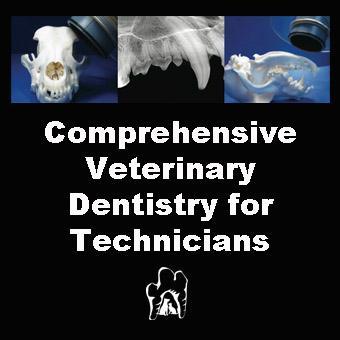 Online Veterinary CE in Dentistry