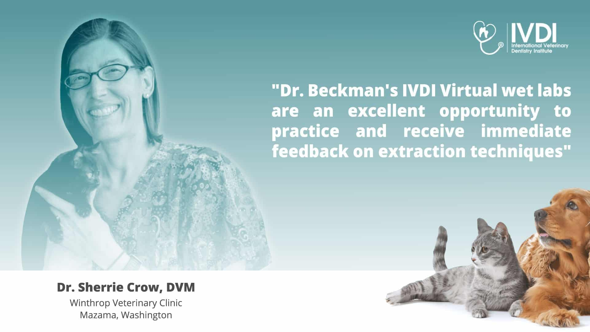 Dr. Sherrie Crow's Review for Dr. Brett Beckman's Two Day Canine and Feline Veterinary Dentistry VIRTUAL Wet Lab