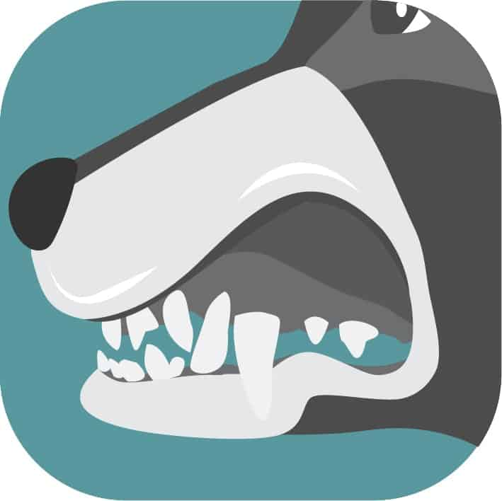 The Icon for Dr. Brett Beckman's Practical Canine Dentistry On Demand Online Course