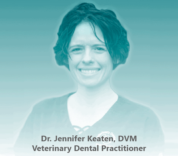 The image of Dr. Jennifer Keaten, DVM, MPH, Veterinary Dental Practitioner